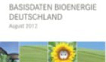 Zwei Drittel aller erneuerbaren Energien stammen aus Biomasse