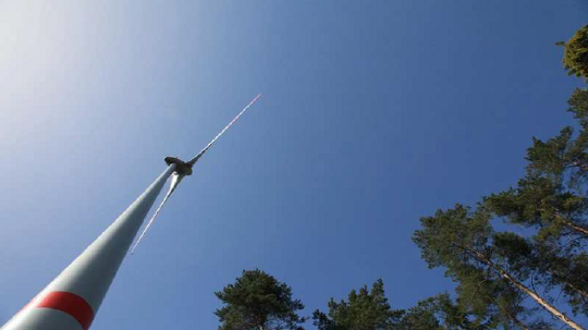 Gemeinde Otterfing und Energiewende Oberland besuchen einen Waldwindpark