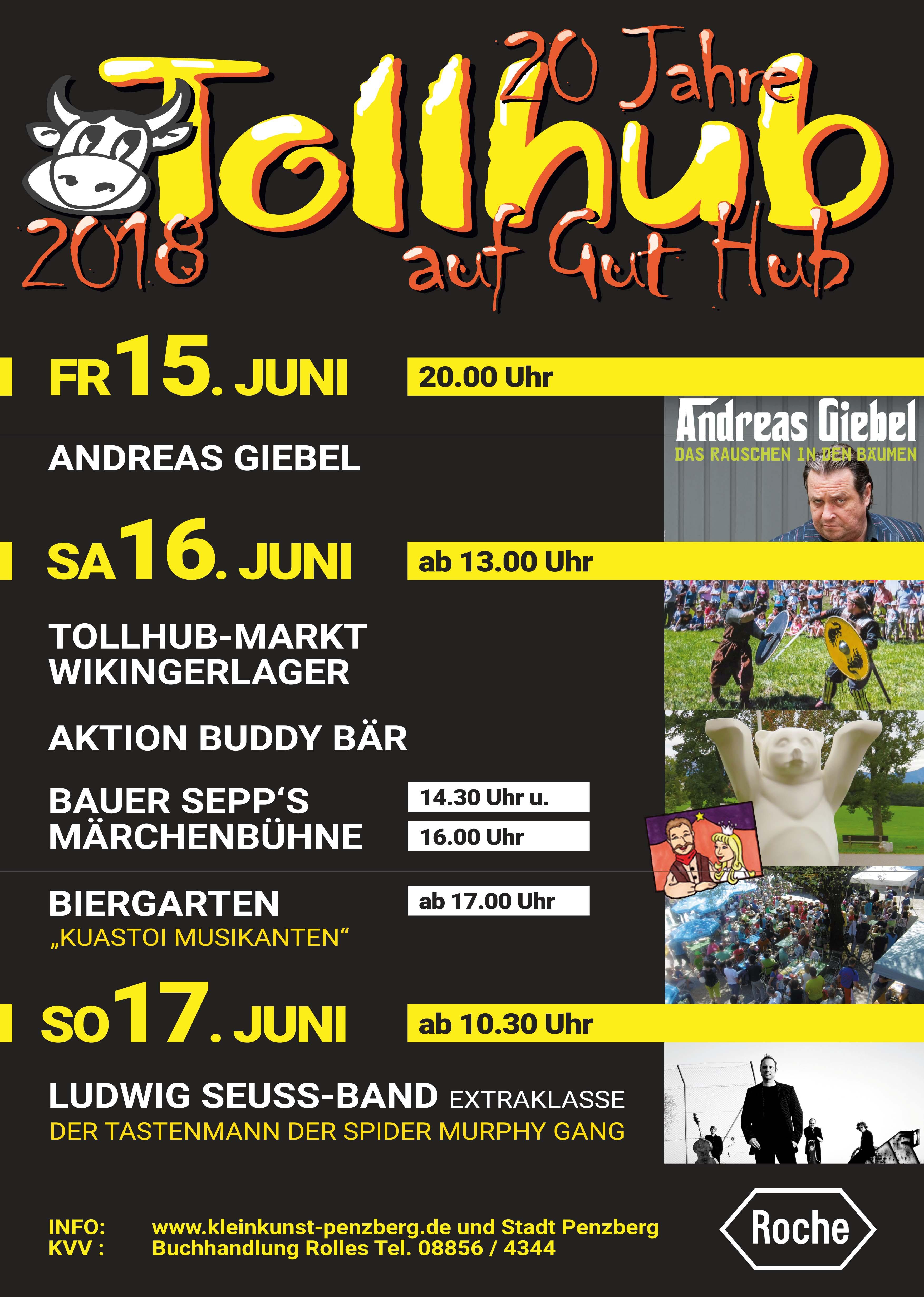 EWO beim Tollhub-Festival am 16.06.2018