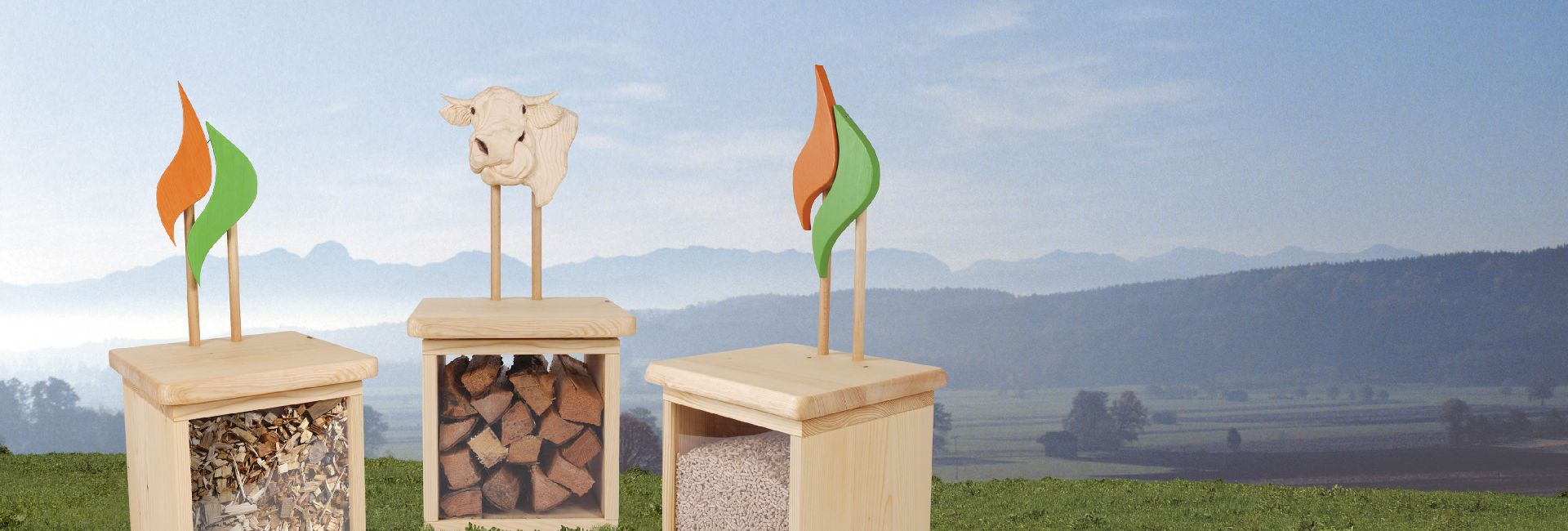 Bioenergieregion Oberland
